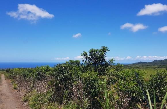 Property for Sale - Agricultural land - bois-cheri