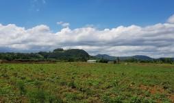 Agricultural land for sale - Deux Bras