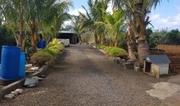 Greenhouse for sale - Bois Cheri