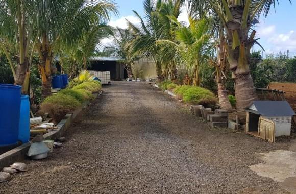 Property for Sale - Farm House - bois-cheri
