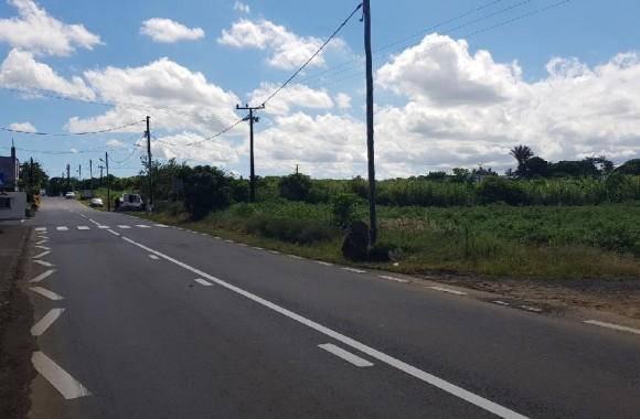 Property for Sale - Agricultural land - deux-bras