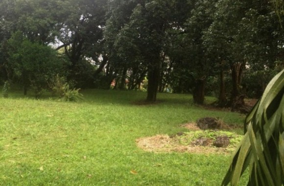 Property for Sale - Residential land - curepipe